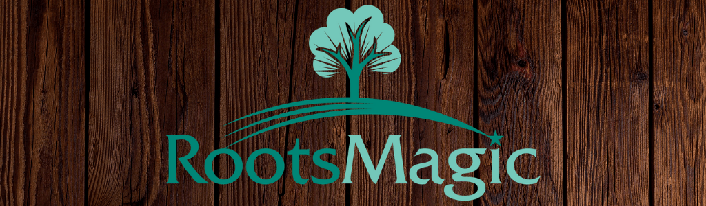 Genealogy with RootsMagic™ at East Springfield