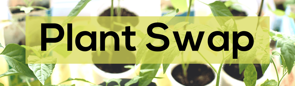 Plant Swap at Forest Park Branch