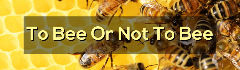 To Bee or Not to Bee – Theater for Families
